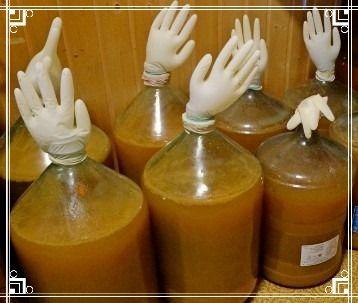 Как сделать вино из яблок 724